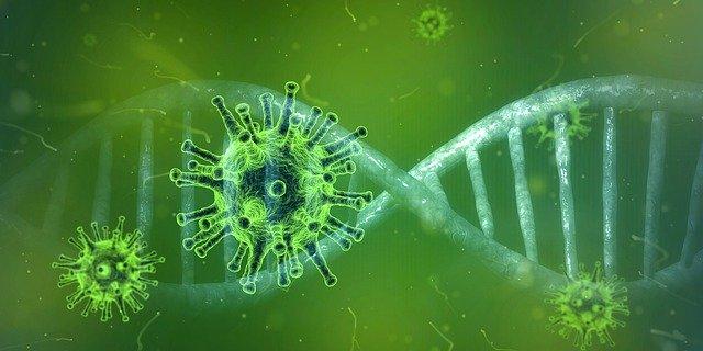 Coronavirus-Symbolbild-grün